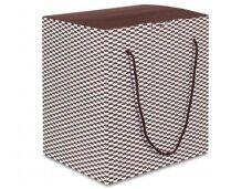 Dėžė Regal su rankenėlėmis 6 but.