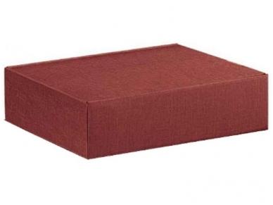 Dėžutė Seta Bordeaux Cantinetta 3 But. 340x280x90
