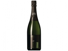 Putojantis vynas Duc De Foix Cava Brut Penedes 0,75 l