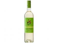 Vynas Ciconia Branco Vinho Regional Alentejano 0,75 l