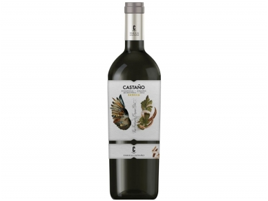 Vynas Castano Organic Red Barrica Yecla D.O. 0,75 l